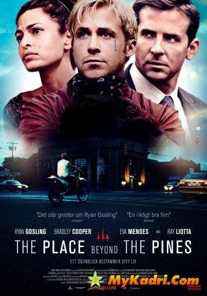 ადგილი ფიჭვნარში / The Place Beyond the Pines