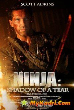 ნინძა 2 / Ninja: Shadow of a Tear