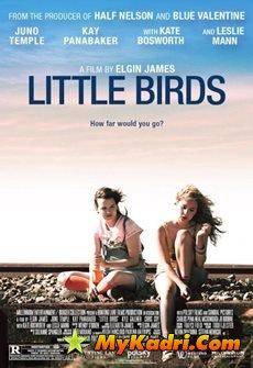 პატარა ჩიტები, Little Birds