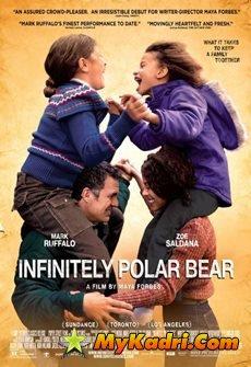 უსაზღვროდ პოლარული დათვი, Infinitely Polar Bear