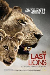 უკანასკნელი ლომები / THE LAST LIONS