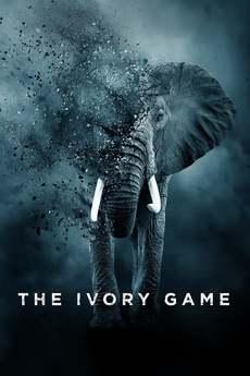 ნადირობა სპილოს ძვალზე / The Ivory Game