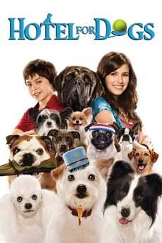 ძაღლების სასტუმრო / Hotel for Dogs
