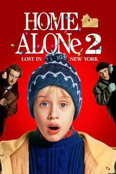 მარტო სახლში 2 / Home Alone 2