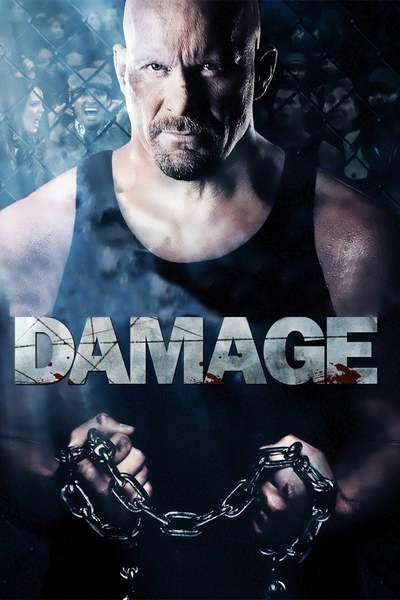 ზიანი / Damage